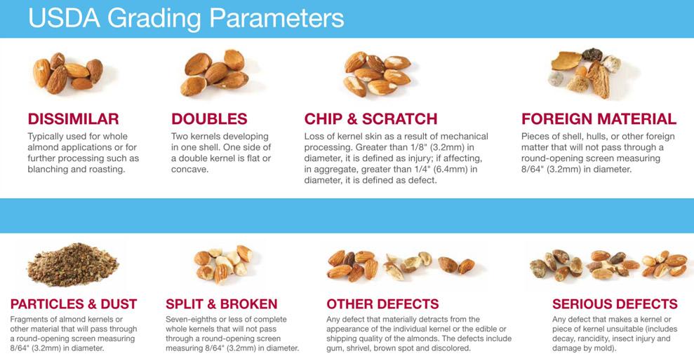 USDA Grading Parameters.jpg